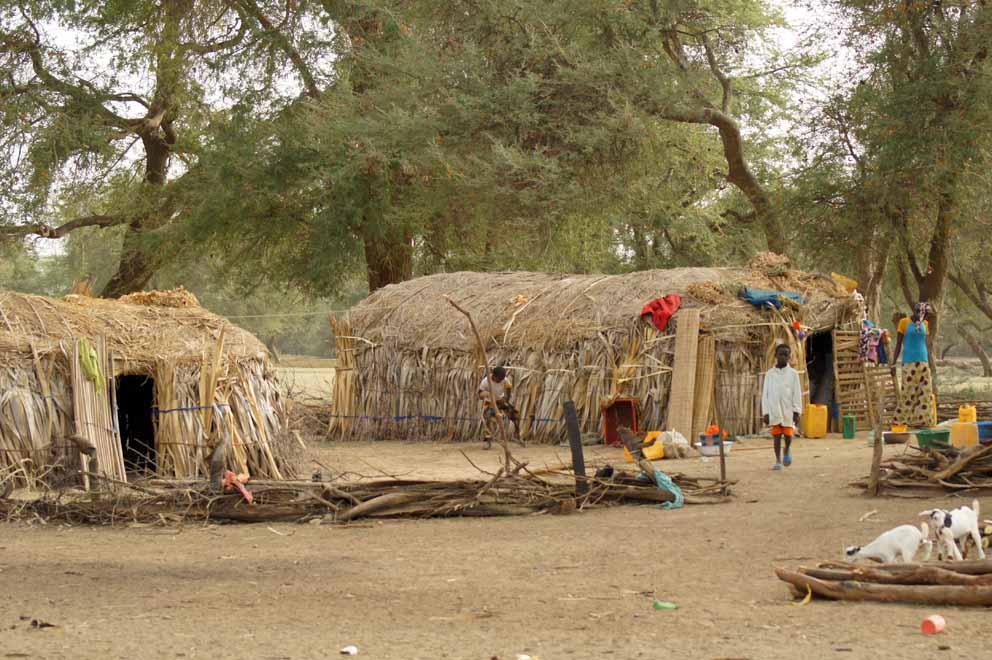 Les cases peulhes, habitations de nomades